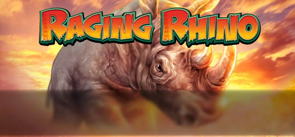 Raging Rhino Slot WMS